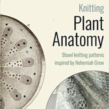 微观世界的编织灵感 源自植物解剖学的美丽棒针蕾丝披肩