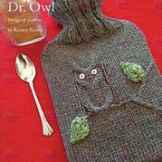 冬日温暖小物编织 棒针猫头鹰热水袋套