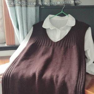 仿淘宝款简单好织女士棒针V领羊毛背心