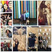 美国的编织艺术节 TNNA全美针艺协会2018夏季展