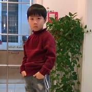 男孩优雅立领棒针插肩毛衣