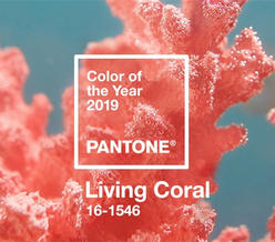 """你那里冷吗?来看温暖活泼而柔美的2019年度色""""活珊瑚橘"""""""