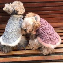 爱你就是为你织毛衣 云朗棒针狗狗毛衣