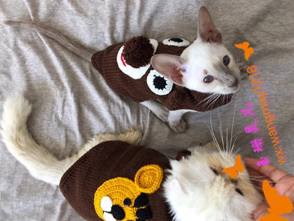 喵喵的千变美衣 钩机结合编织宠物毛衣