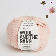 CRAZY SEXY WOOL超粗100%羊毛線 英國Wool and the gang
