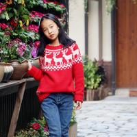 麋鹿童话 红色棒针育克圆肩提花毛衣