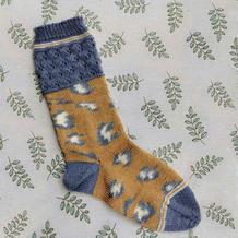自动提花豹纹女士棒针长筒袜编织说明
