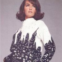城市景观毛衣 女士棒针图案毛衣编织图解