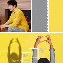 """2021年度色""""极致灰""""和""""亮丽黄""""给与大家克服不确定感的安定与温暖"""