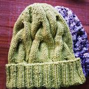 简单好织的女士棒针麻花帽子(超级暖和哦!)
