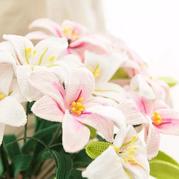 百合花(4-2)祝福之花系列钩花编织视频教程