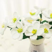 太平花(4-4)钩针花园祝福之花系列编织视频教程