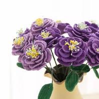 洋桔梗(4-2)创意毛线钩针花卉系列编织视频
