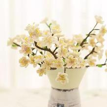 樱花(4-4)创意毛线钩针花卉系列编织视频