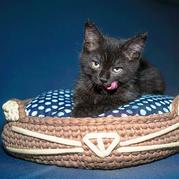 豆總的窩  簡單好織的云趣鉤針貓咪窩